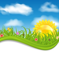Summer card sky cloud sun grass flower butterfly vector image vector image