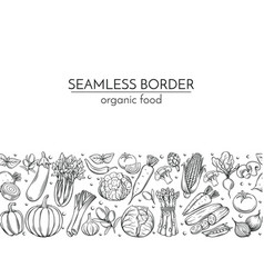 template borders with hand drawn vegetables vector image