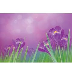 flowers violet vector image