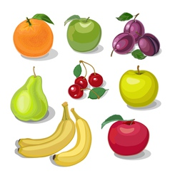 Set fruit vector