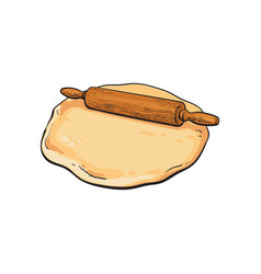 wooden rolling pin roller and flattened dough vector image