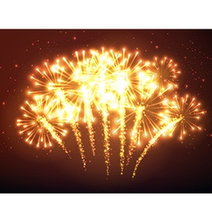 Festive gold firework background vector image
