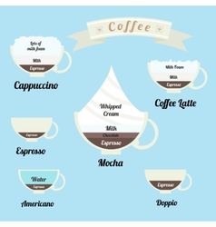 infographics set types of coffee drinks vector image