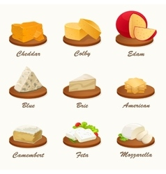 Set of different kinds of cheese on cutting board vector