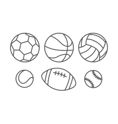 Sports balls in linear style vector image