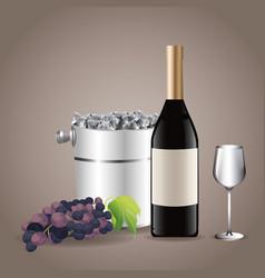 Bottle glass cup ice bucket grape vector