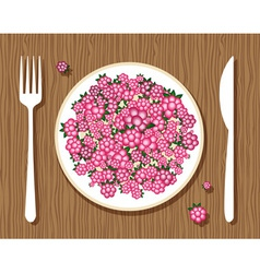 raspberries on a plate vector image