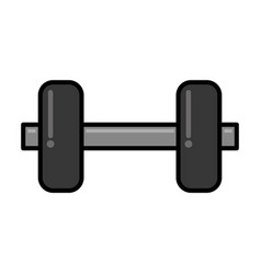 weight gym sport vector image
