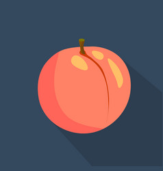 peach cartoon flat icondark blue background vector image