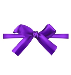 Realistic purple bow vector
