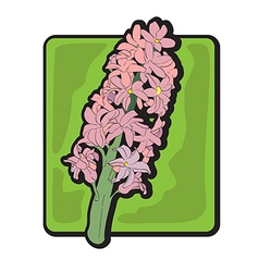 Hyacinth clip art vector