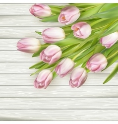 Beautiful pink tulips eps 10 vector