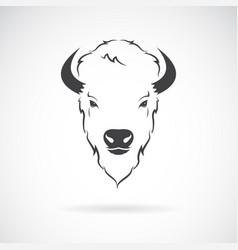 buffalo head design on white background wild vector image