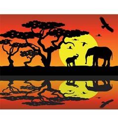 elephants in africa near water vector image vector image