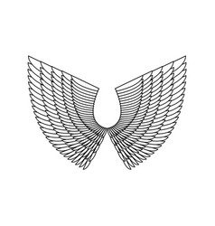 angel wings isolated white feather wing of bird vector image