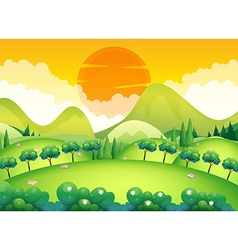 Scene with field and trees vector
