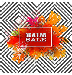 autumn foliage sale on pattern vector image vector image