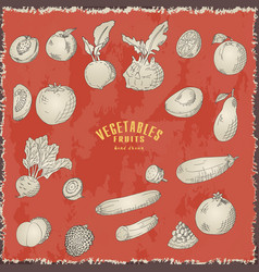 Hand drawn vegetables and fruits fresh vector