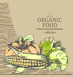 Organic food advertising with vegetables vector