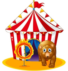 A red tent at the back of a bear and a flaming vector image
