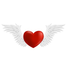 Hovering heart with wings vector