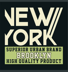 new york superior urban brooklyn vector image