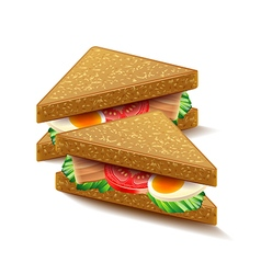 Triangular sandwiches isolated on white vector image