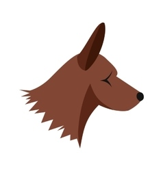 Collie dog icon flat style vector