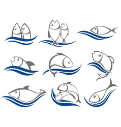 Set of fish icons vector
