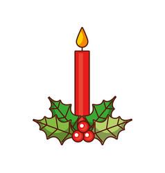 christmas candle holly berry decoration natural vector image