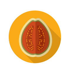 Guava flat icon tropical fruit vector
