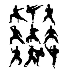 Taekwondo and karate vector