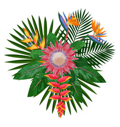 tropical bouquet composition with protea vector image vector image