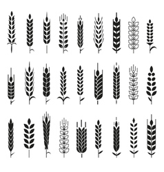 Wheat Ears Icons and Logo Set vector image vector image