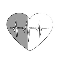Heart cardio isolated icon vector