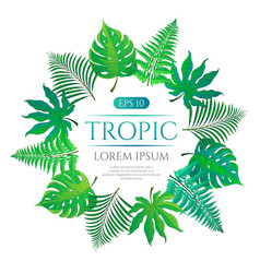 tropical leaves round frame with place for text vector image