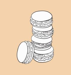 Hand drawn stack of colorful macaron macaroon vector
