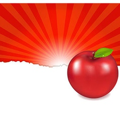 Red apple and sunburst vector