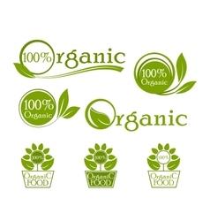 Organic iconic set label design vector