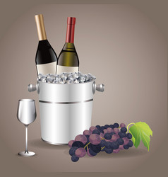 Bottle glass cup ice bucket grape vector