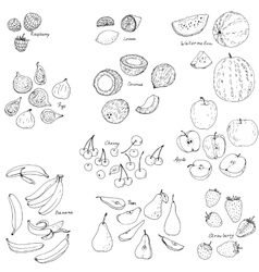 Froots and berries set vector