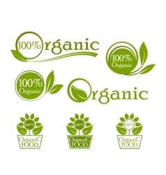 Organic iconic set label design vector image vector image