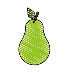 pear doodle over white background vector image