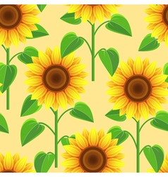 Seamless pattern with flowers sunflowers vector