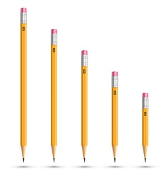 Pencils various length vector