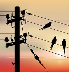 Birds migration vector image vector image