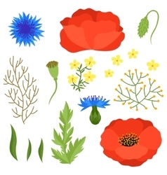 Set of various spring flowers leaves Elements vector image
