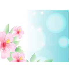 Spring and summer light blue sky and hibiscus vector