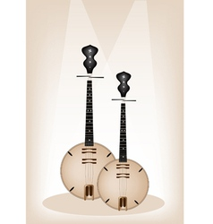 Musical dan nguyet vector