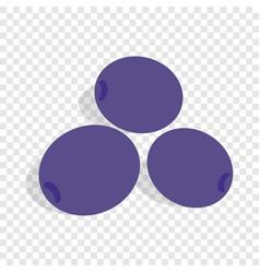 blue plum isometric icon vector image vector image